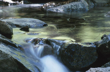 Acceptance Is Like The Peace and Calm Of A Quiet Brook